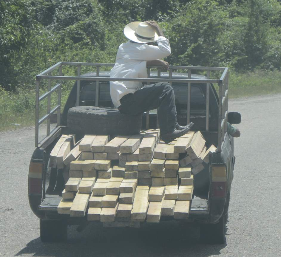 Holztaxi