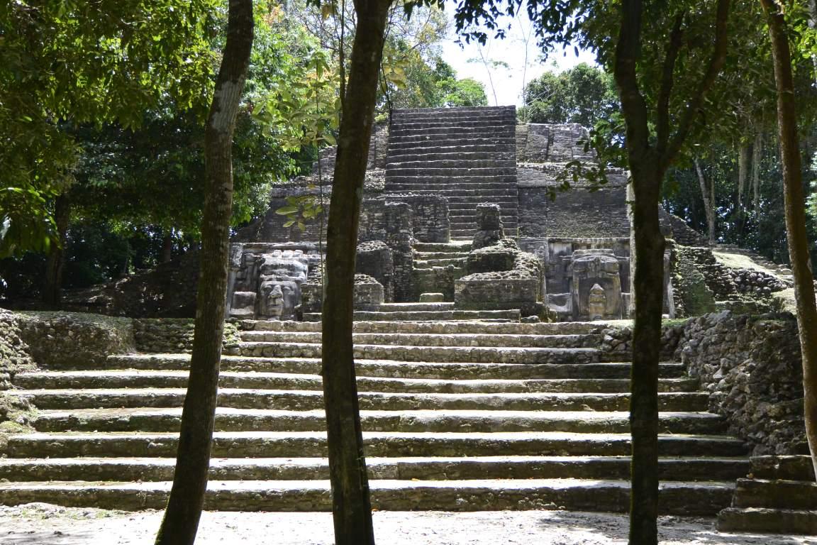 Affen, Fische,  Jaguar und Kultur
